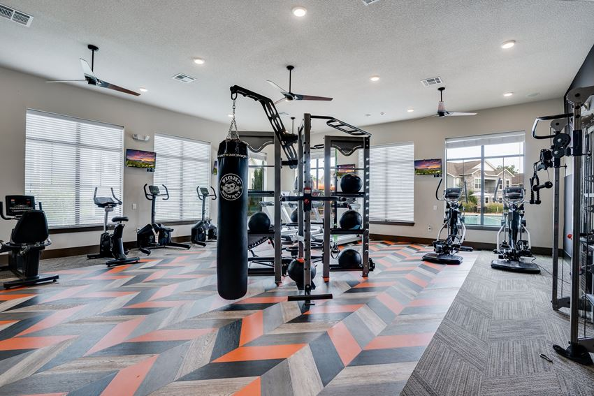 Large Weight Equipment at the Fitness Center