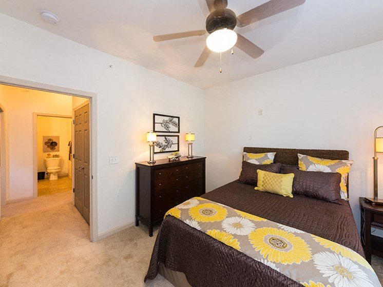 Bedrooms with Carpet and Ceiling Fan