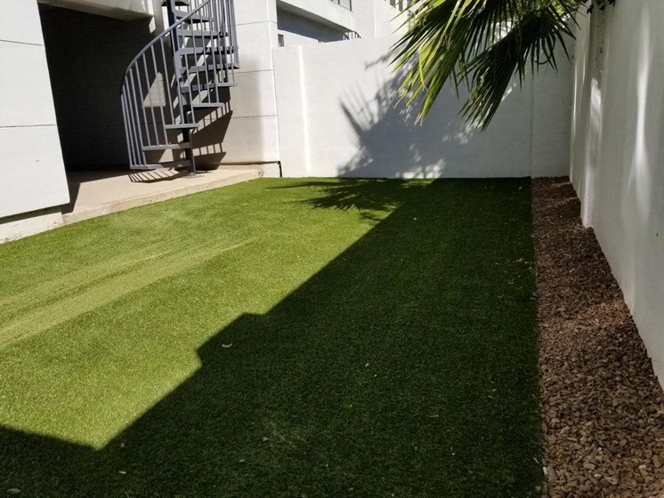 Yard at Dolce Villagio Townhomes in Tempe AZ