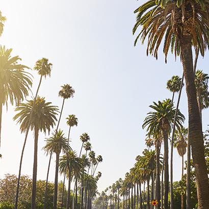 West Los Angeles Image