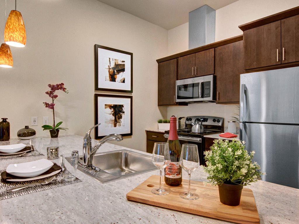 4800 Excelsior Kitchen Closeup View