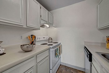 920 Arcturus Drive Studio-2 Beds Apartment for Rent Photo Gallery 1