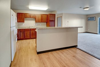 209 11Th Avenue NE #113 2 Beds Apartment for Rent Photo Gallery 1
