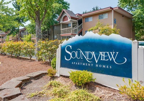 Soundview Community Thumbnail 1
