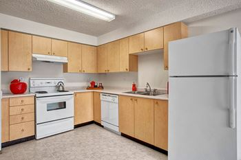 1175 Leila Avenue 1-2 Beds Apartment for Rent Photo Gallery 1