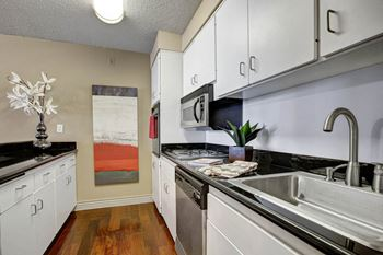1500 7th St Studio-3 Beds Apartment for Rent Photo Gallery 1