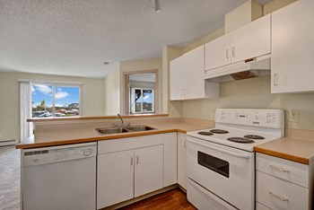 5011 - 140 Avenue NW 1 Bed Apartment for Rent Photo Gallery 1