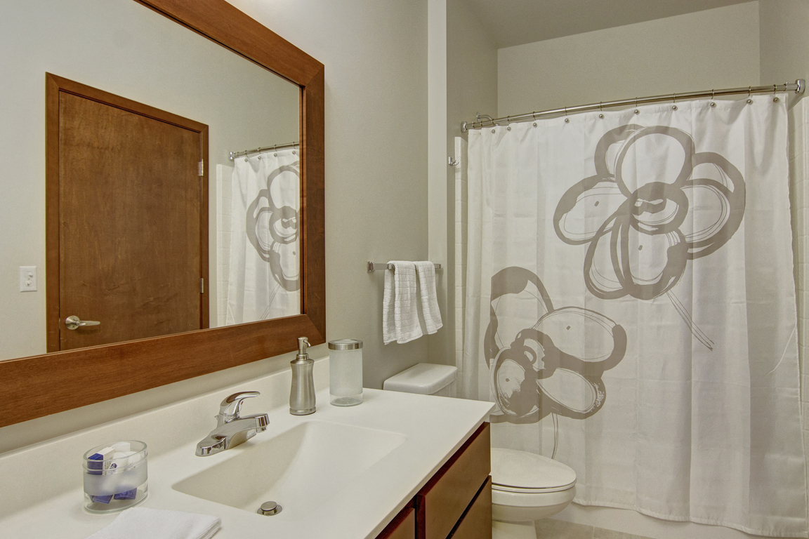 Vue Bathroom View