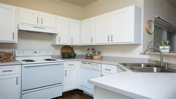 30050 SW Town Center Lp. W Suite 100 1-3 Beds Apartment for Rent Photo Gallery 1