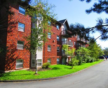 137, 145, And 149 Walker Avenue 1-3 Beds Apartment for Rent Photo Gallery 1