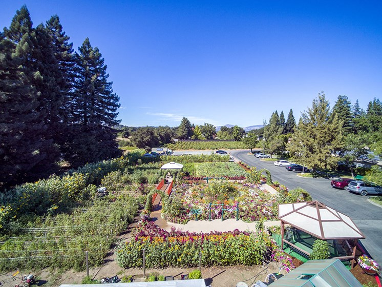 Pleasant Garden at Healdsburg, A Pacifica Senior Living Community, California, 95448