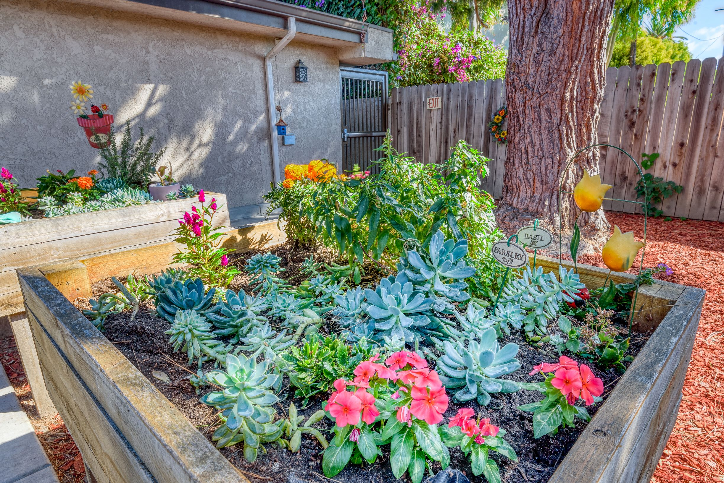 Our beautiful garden at Pacifica Senior Living South Coast.