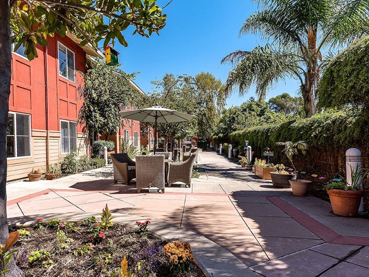 Shaded Outdoor Courtyard Area at Pacifica Senior Living Union City, Union City, CA, 94587