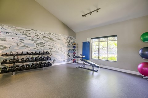 State-Of-The-Art Fitness Center At Vista Promenade Luxury Apartment Homes in Temecula, CA