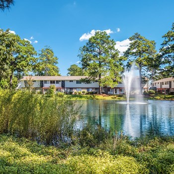 10714 Abercorn Street 1-3 Beds Apartment for Rent Photo Gallery 1