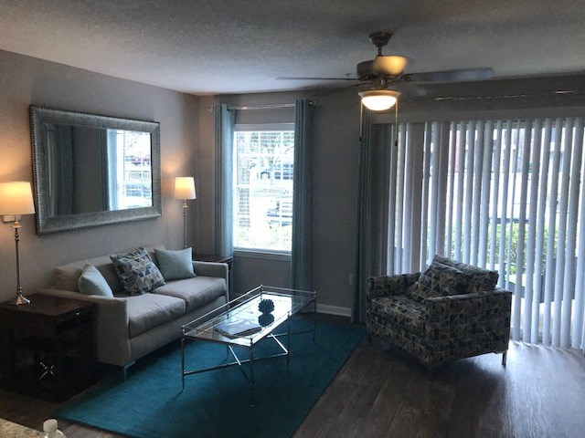 furnished living room in Tallahassee apartment featuring blue carpet and gray couch and chair
