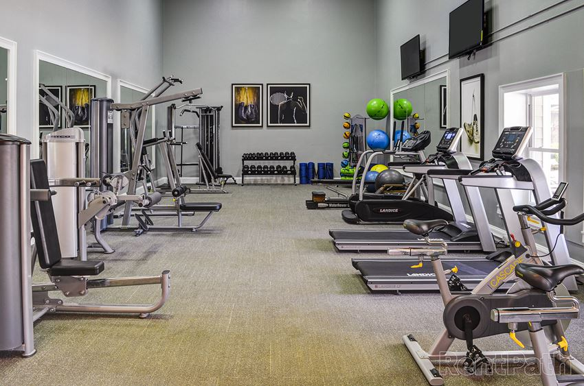 Premium fitness center with weights and cardio machines at Falls at Spring Creek Apartment Homes in Macon, GA