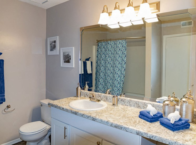 Bathroom interior with spacious countertop at Forest Ridge