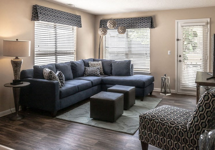 Living room interior in Forest Pointe apartment home