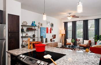 5010 South Congress Ave 3 Beds Apartment for Rent Photo Gallery 1