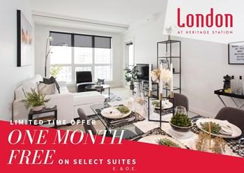 #119, 8880 Horton Road SW Studio Apartment for Rent Photo Gallery 1