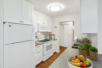 278 Chestnut Street Studio Apartment for Rent Photo Gallery 1