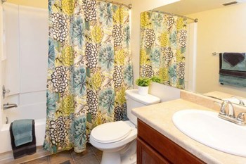 6633 Valley Hi Drive 1 Bed Apartment for Rent Photo Gallery 1