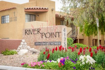 4175 East Fort Lowell Rd 2 Beds Apartment for Rent Photo Gallery 1