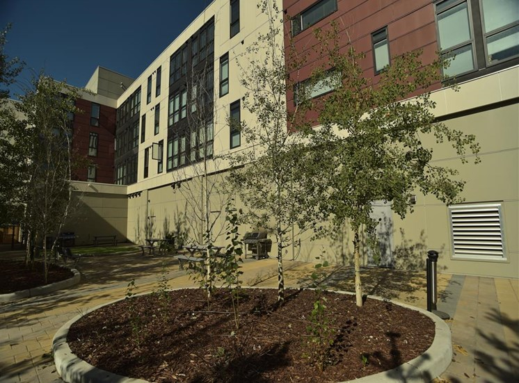 Mission 17 residential rental apartments BBQ Patio and pet area