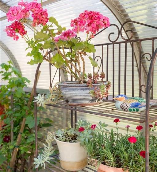 Garden Courtyard at Cogir of Manteca, California