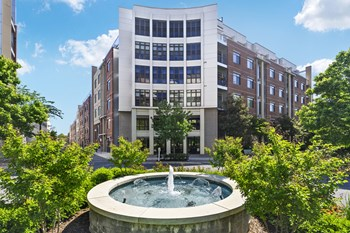 305 10Th Street S Studio-2 Beds Apartment for Rent Photo Gallery 1