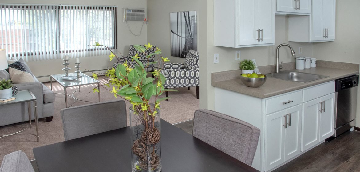 60010th_Mpls_living-kitchen-dining1