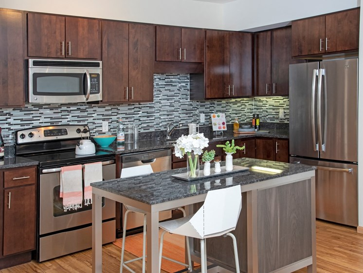 Upgraded Kitchen Finishes at Third North, Minnesota, 55401