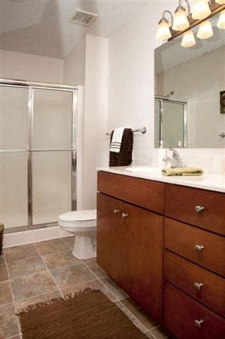 Bath vanity with stand up shower
