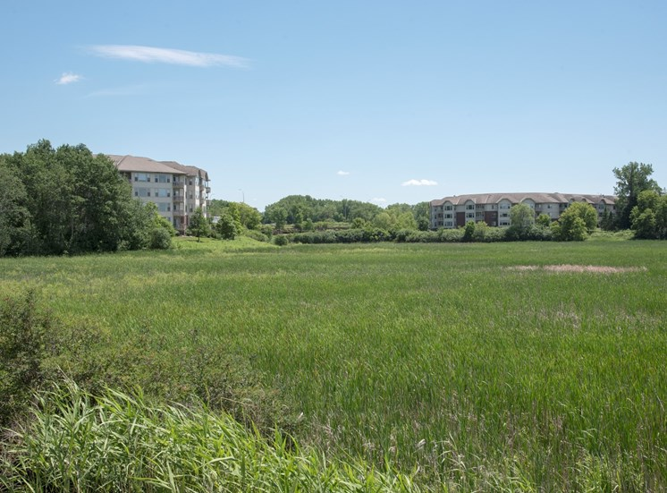 Waterstone Place sits on a beautiful marsh