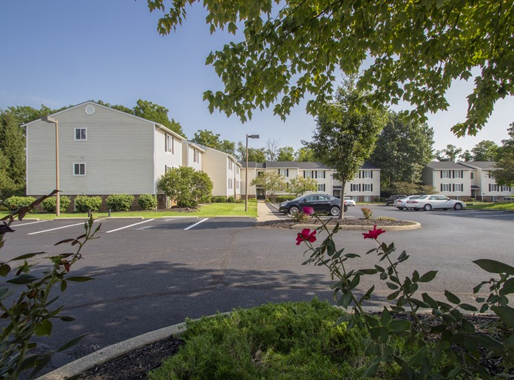 This is a picture of apartment buildings through some flowers and a tree at Deer Hill Apartments in Cincinnati, Ohio.