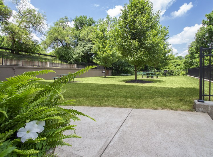 This is a photo of the BBQ area at Park Lane Apartments in Cincinnati, OH.