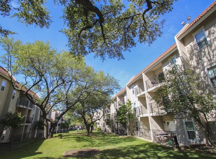 This is a photo of a grassy area between buildings at Princeton Court Apartments in Dallas, TX