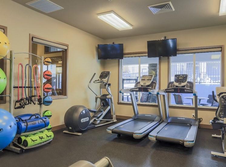 Cardio Equipment in Gym