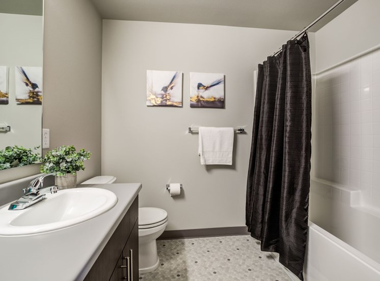 Luxurious Bathrooms at Panorama, Snoqualmie, Washington