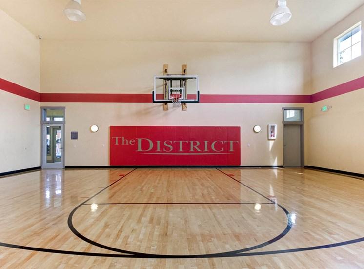 Indoor Sports Court