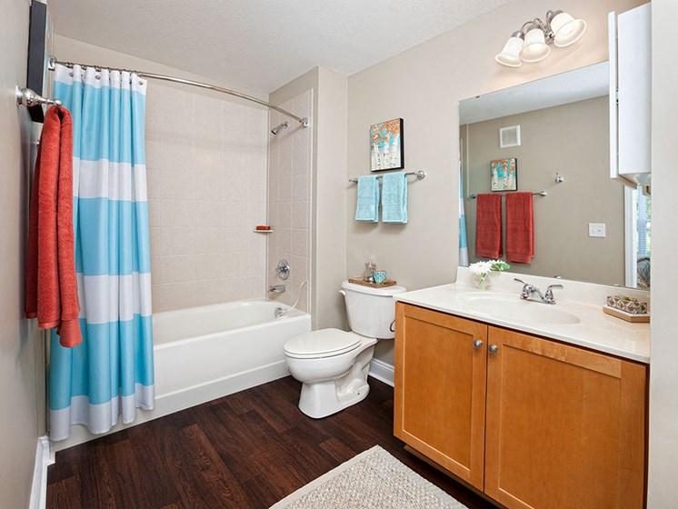 Bathroom at Smiths Landing Apartments in Blacksburg VA
