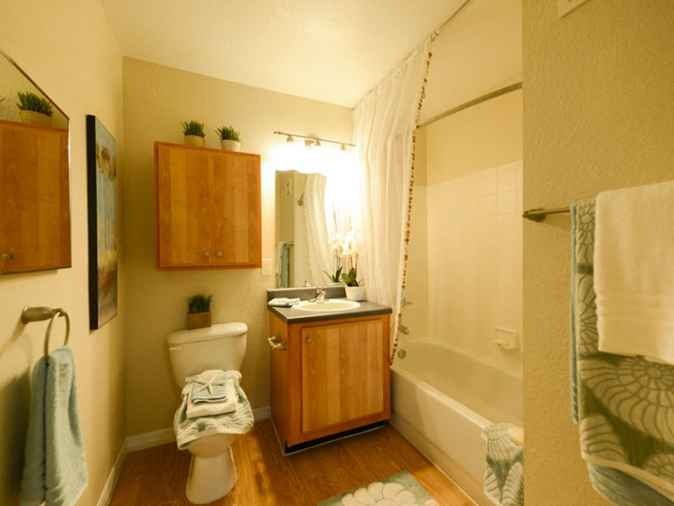 Addison Landing Model Bathroom
