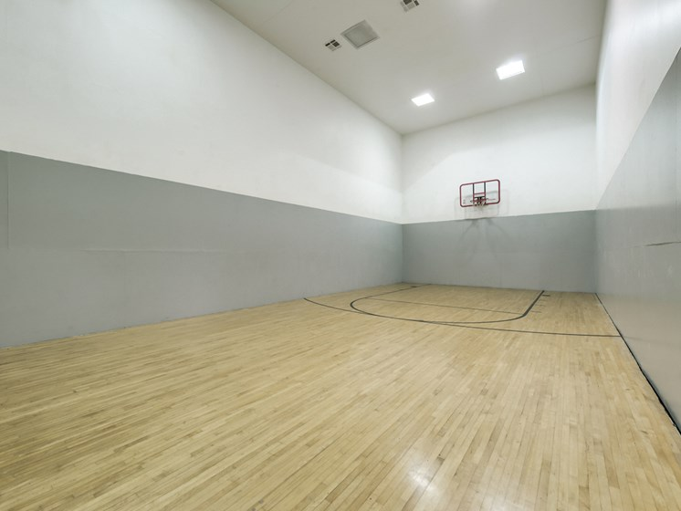 Turtle Pointe Apartments Basketball Court