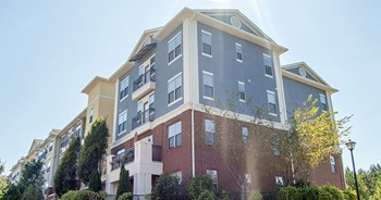 4345 Alta Drive 1-3 Beds Apartment for Rent Photo Gallery 1