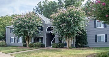 6701 Carnation Street 3 Beds Apartment for Rent Photo Gallery 1