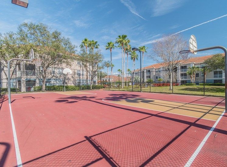 Basketball Court at The Boot Ranch Apartments, Palm Harbor, 34685