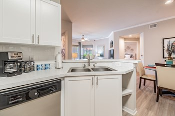 8702 New Tampa Blvd. 1-3 Beds Apartment for Rent Photo Gallery 1