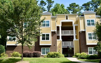 4901 Tall Timber Drive 1 Bed Apartment for Rent Photo Gallery 1