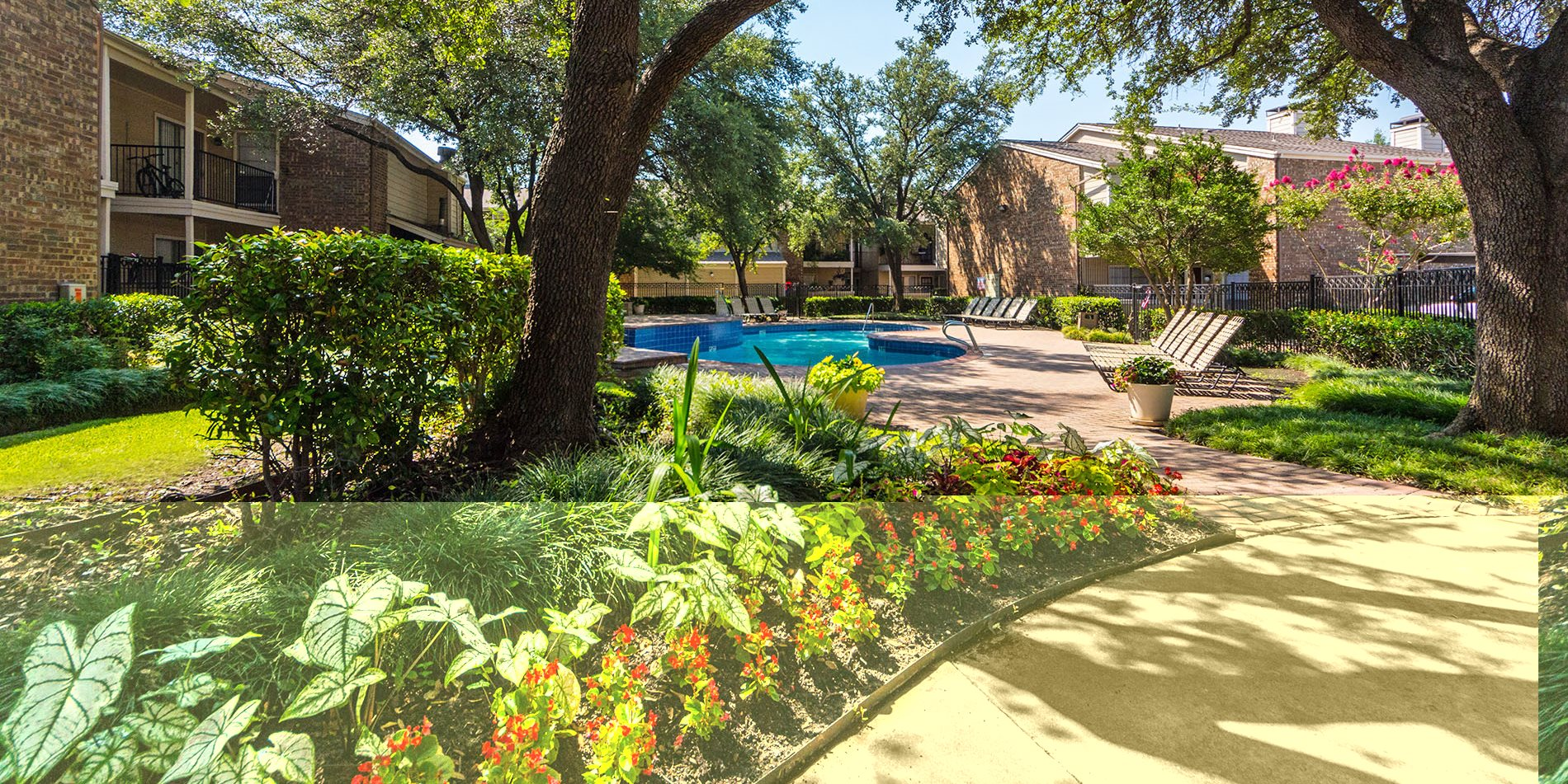 Landscaping at Davenport Apartments in Dallas, Texas, TX
